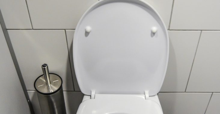 Pastille WC
