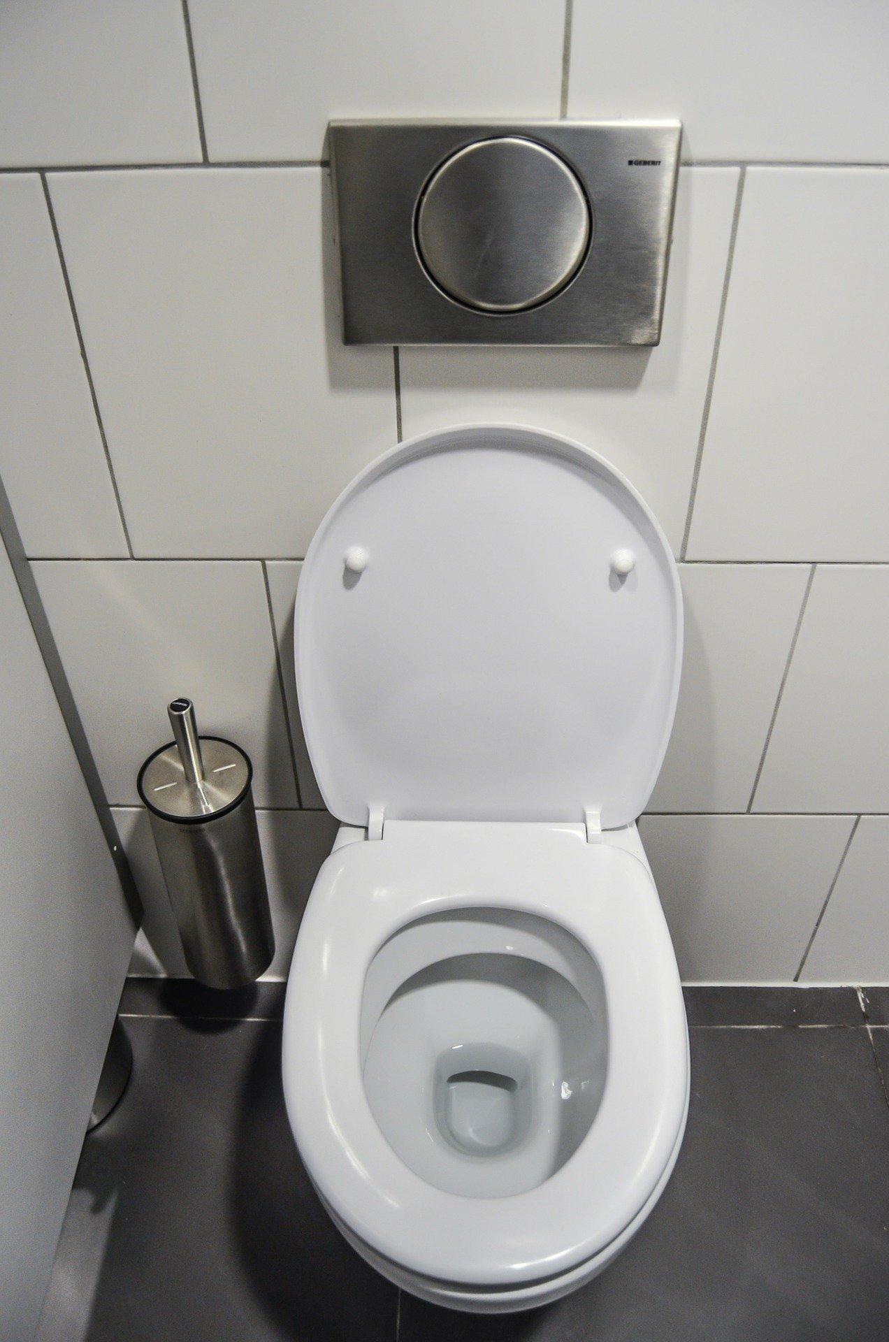 Pastille WC Maison